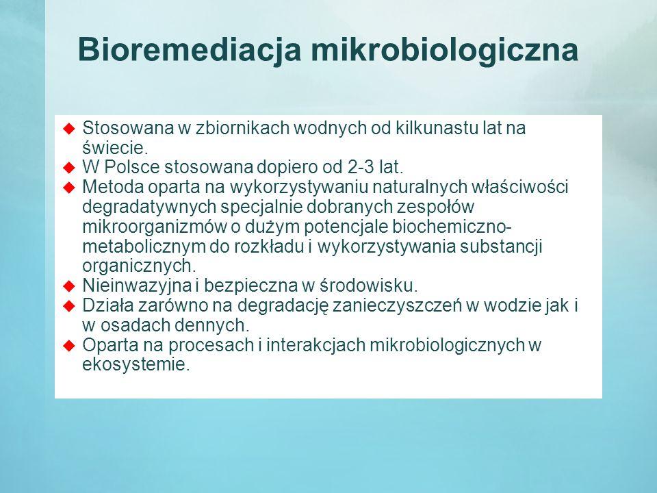 Bioremediacja mikrobiologiczna