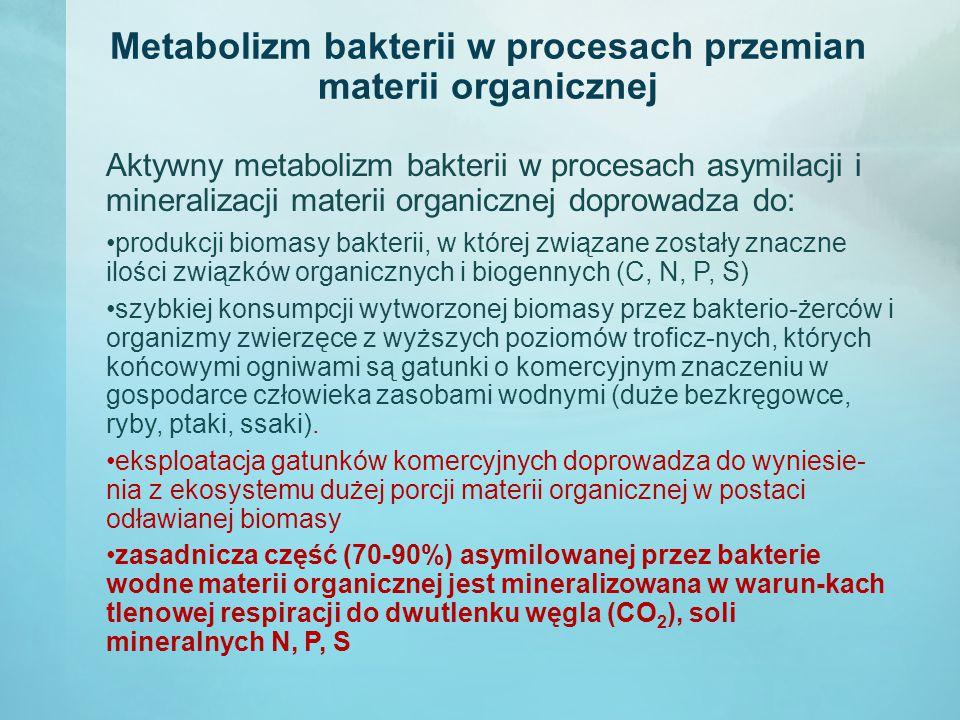 Metabolizm bakterii w procesach przemian materii organicznej