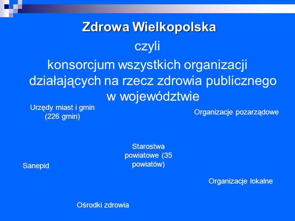 Zdrowa Wielkopolska czyli konsorcjum wszystkich organizacji działających na rzecz zdrowia publicznego w województwie