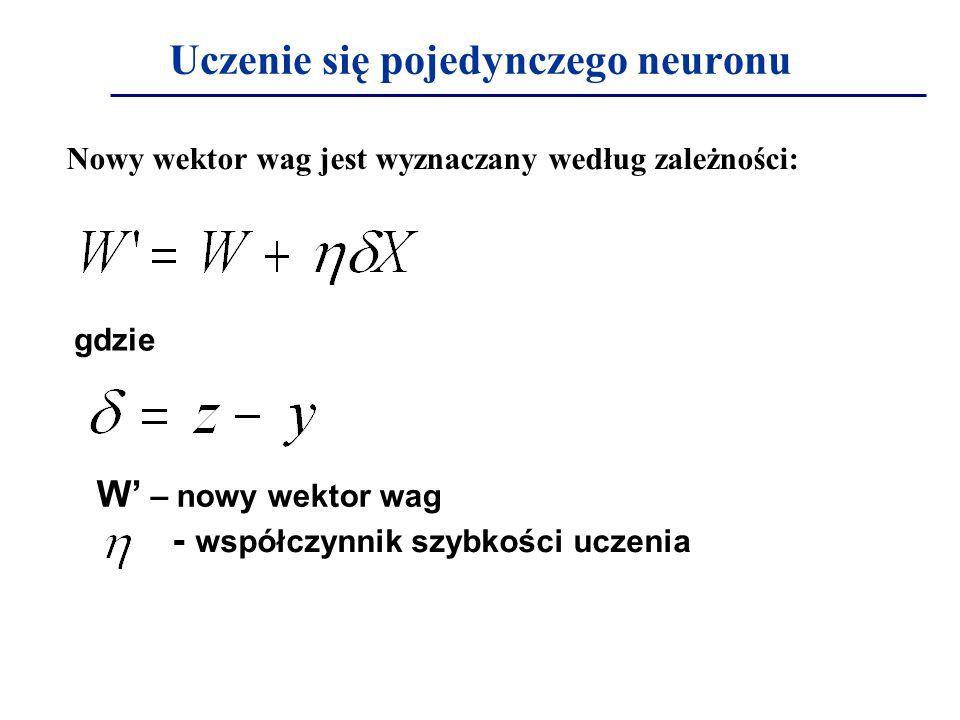 Uczenie się pojedynczego neuronu
