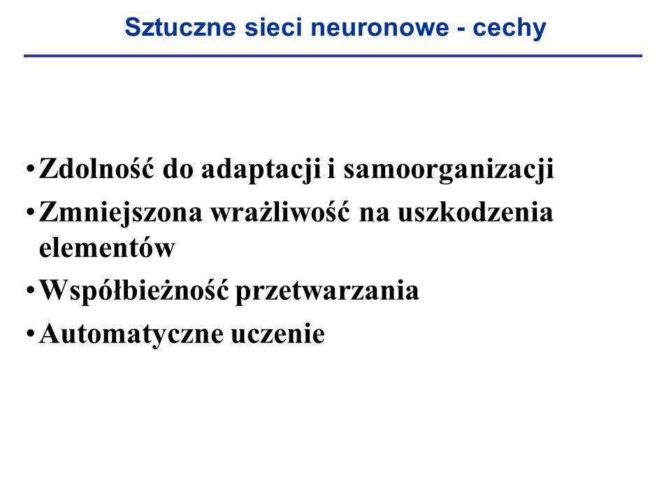 Sztuczne sieci neuronowe - cechy