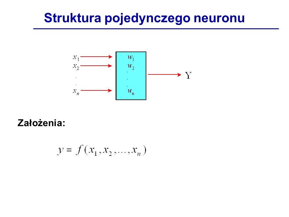 Struktura pojedynczego neuronu