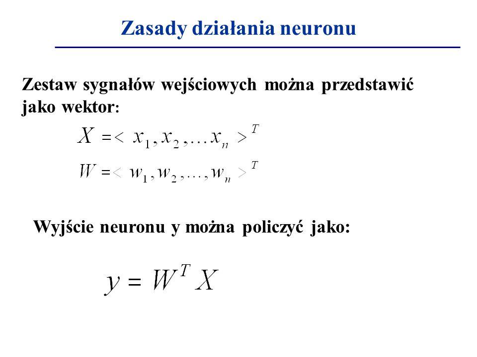 Zasady działania neuronu