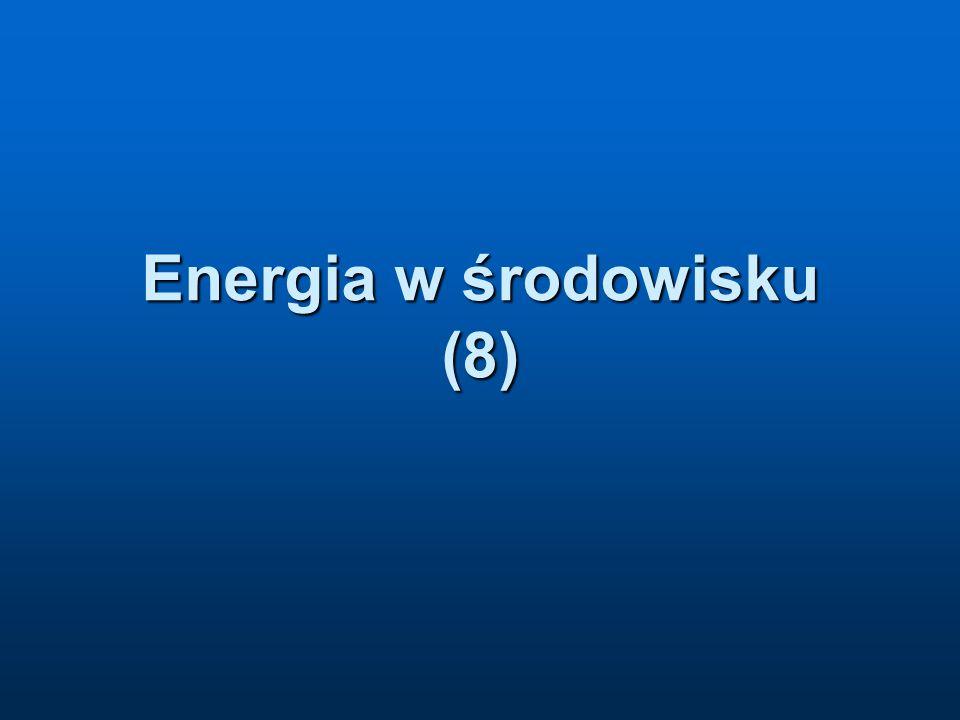 Energia w środowisku (8)