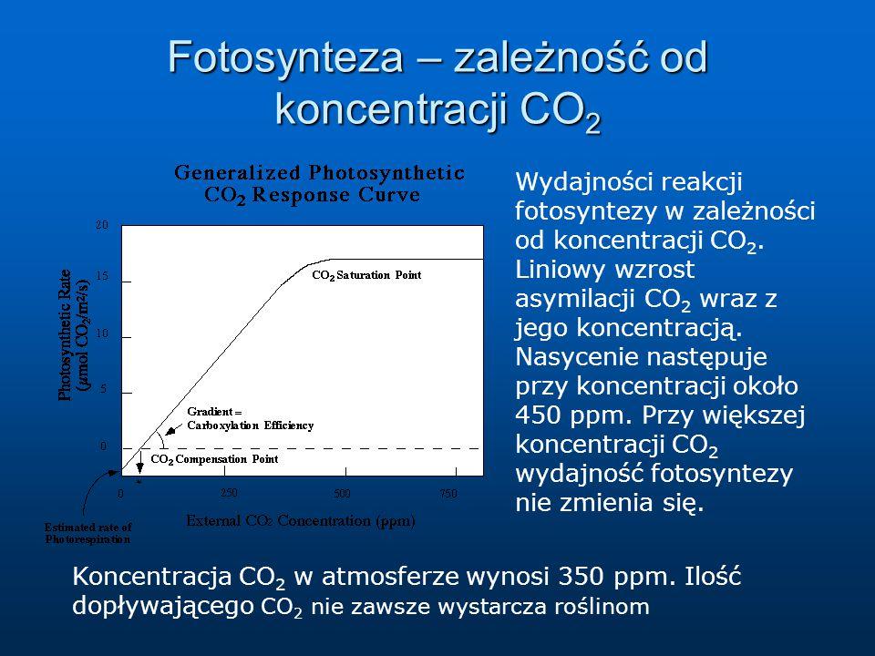 Fotosynteza – zależność od koncentracji CO2