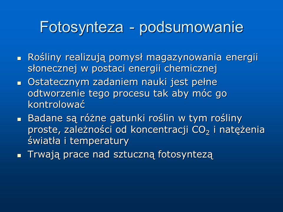 Fotosynteza - podsumowanie
