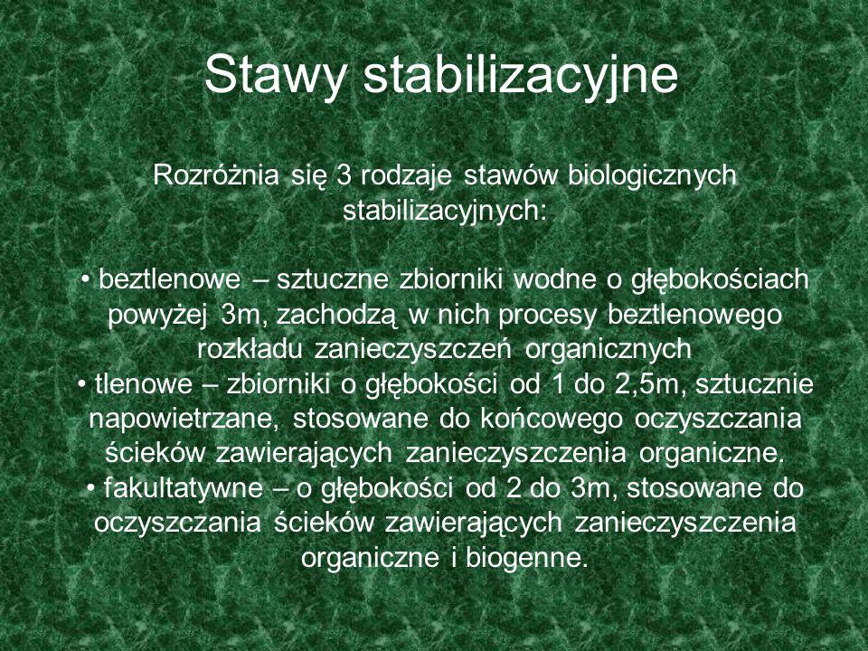 Rozróżnia się 3 rodzaje stawów biologicznych stabilizacyjnych: