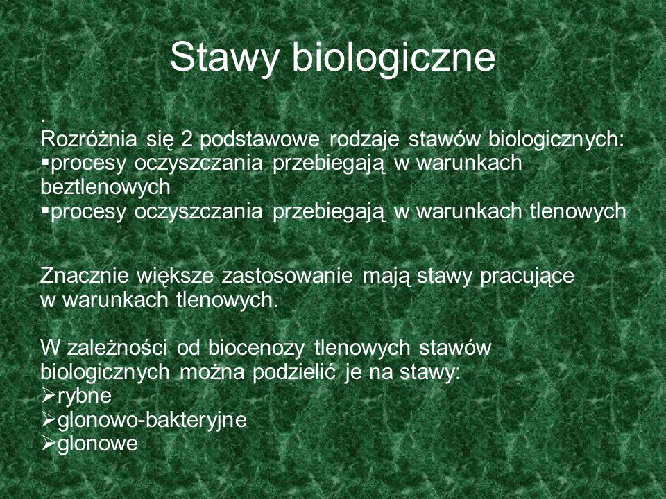 Stawy biologiczne . Rozróżnia się 2 podstawowe rodzaje stawów biologicznych: procesy oczyszczania przebiegają w warunkach beztlenowych.