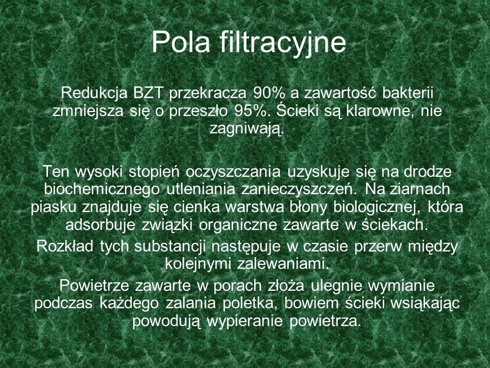 Pola filtracyjne Redukcja BZT przekracza 90% a zawartość bakterii zmniejsza się o przeszło 95%. Ścieki są klarowne, nie zagniwają.