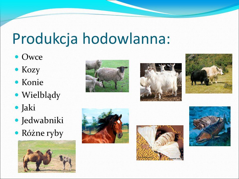 Produkcja hodowlanna: