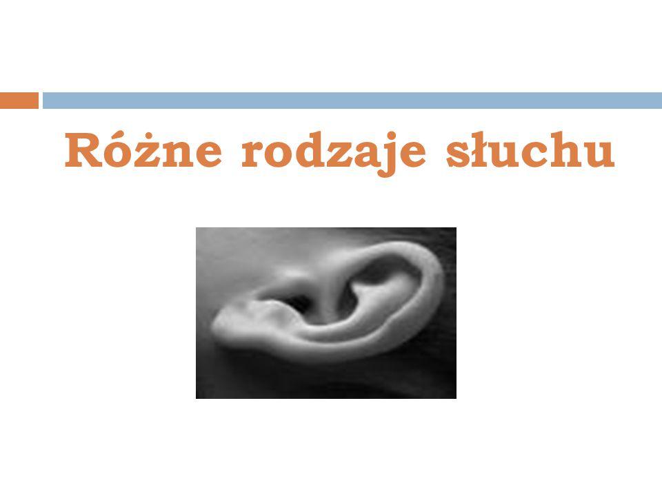 Różne rodzaje słuchu