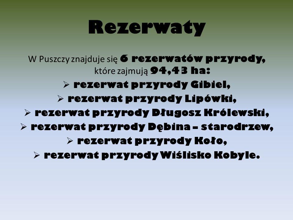 Rezerwaty W Puszczy znajduje się 6 rezerwatów przyrody, które zajmują 94,43 ha: rezerwat przyrody Gibiel,