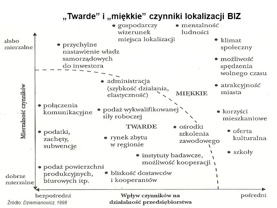 """""""Twarde i """"miękkie czynniki lokalizacji BIZ"""