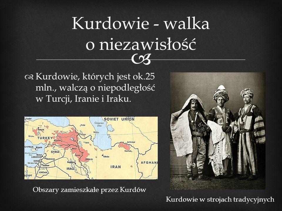 Kurdowie - walka o niezawisłość