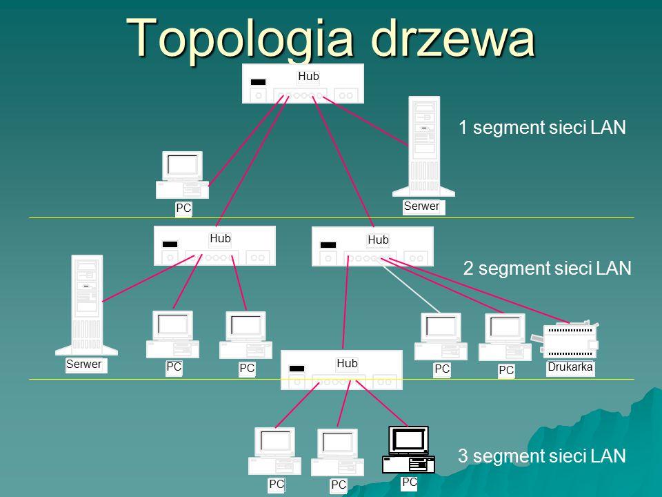 Topologia drzewa 1 segment sieci LAN 2 segment sieci LAN