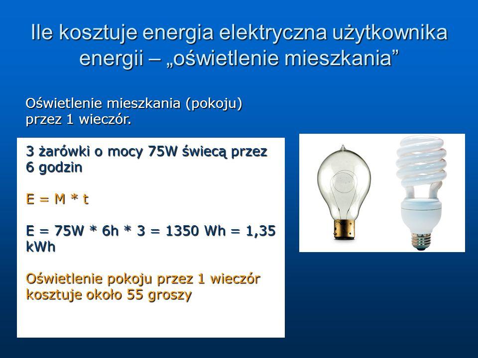 """Ile kosztuje energia elektryczna użytkownika energii – """"oświetlenie mieszkania"""