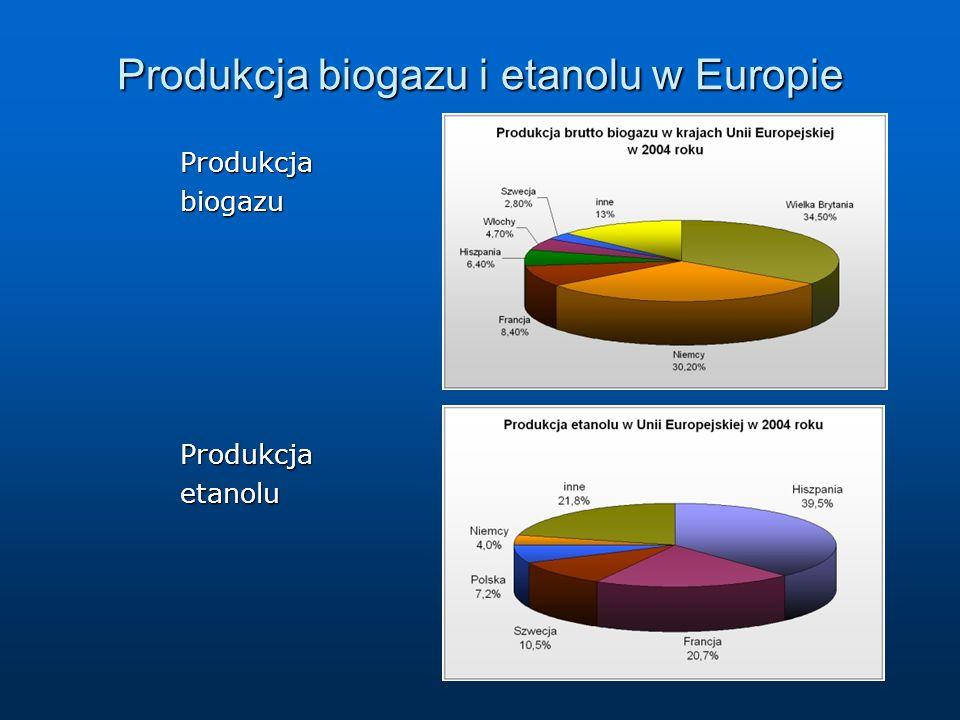 Produkcja biogazu i etanolu w Europie
