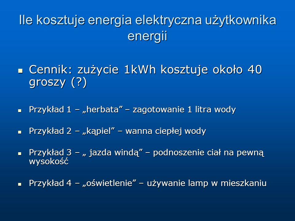Ile kosztuje energia elektryczna użytkownika energii