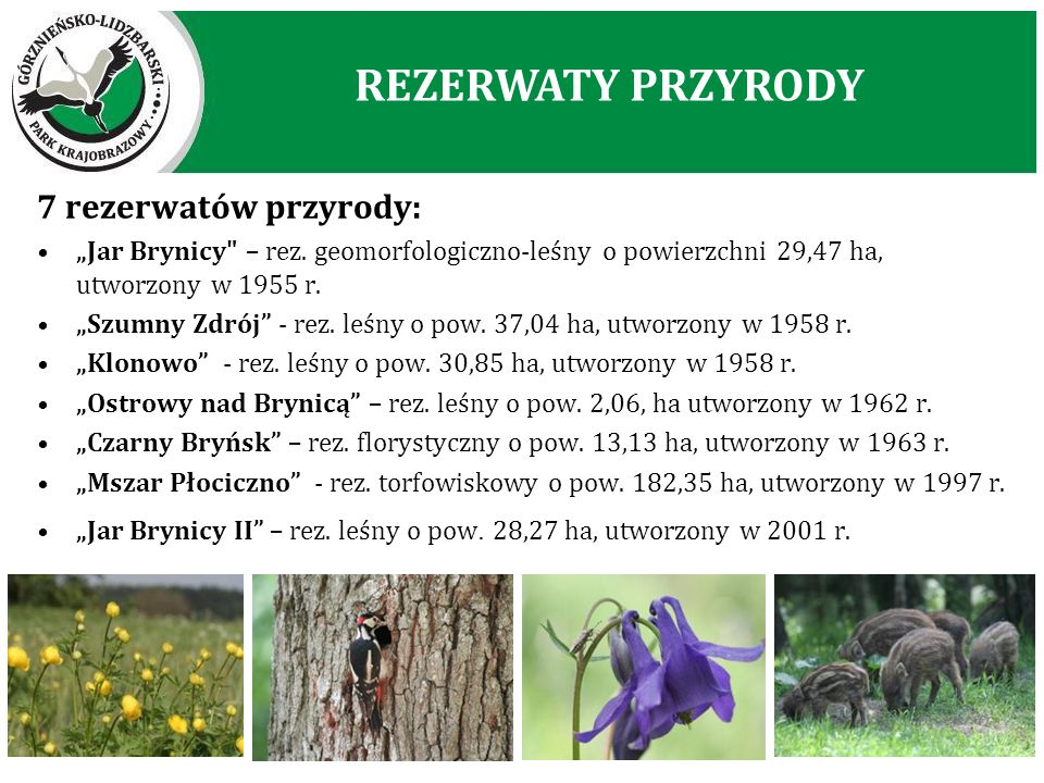 REZERWATY PRZYRODY 7 rezerwatów przyrody: