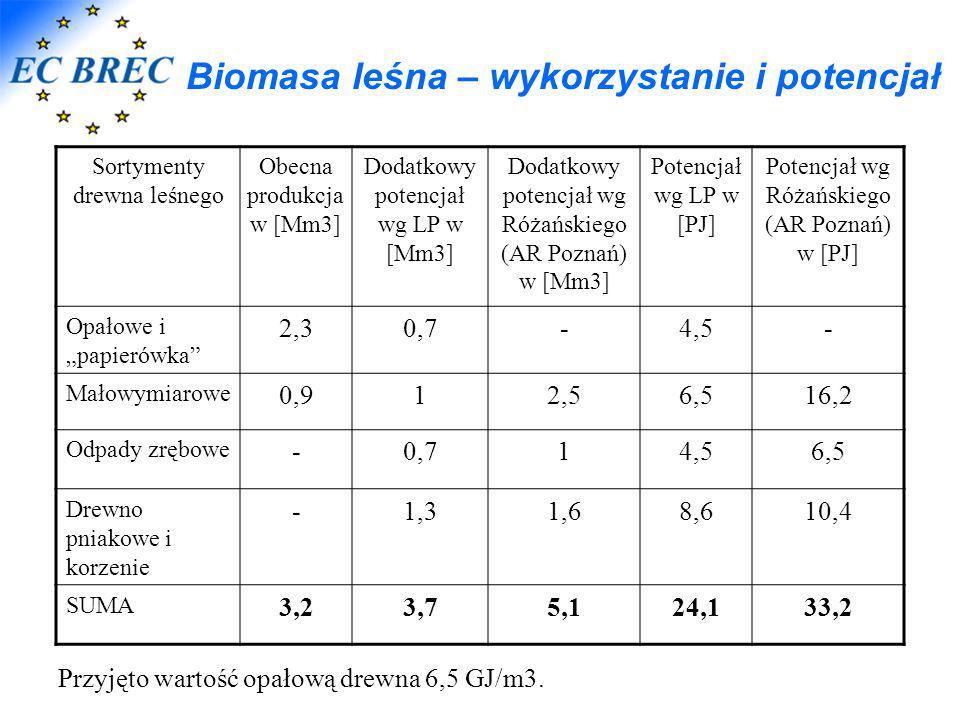 Biomasa leśna – wykorzystanie i potencjał