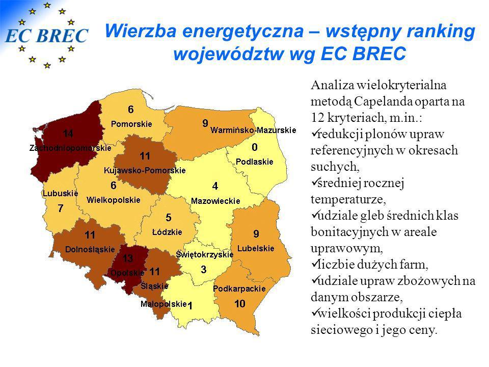 Wierzba energetyczna – wstępny ranking województw wg EC BREC