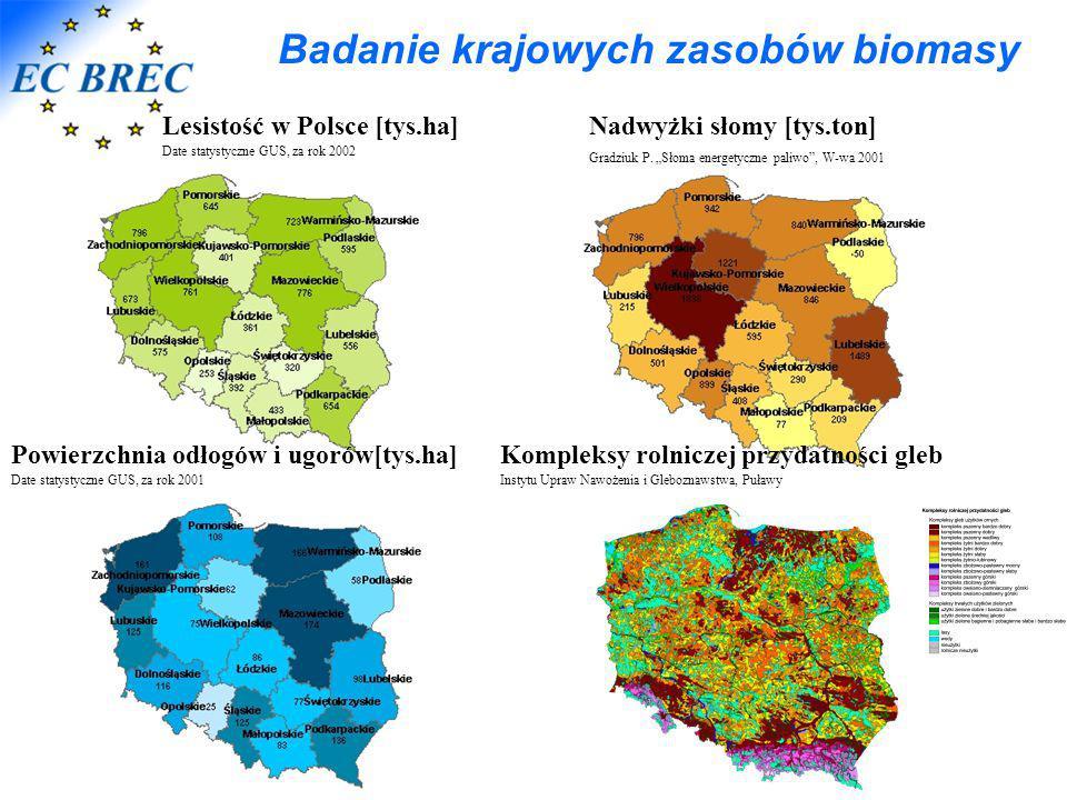 Badanie krajowych zasobów biomasy