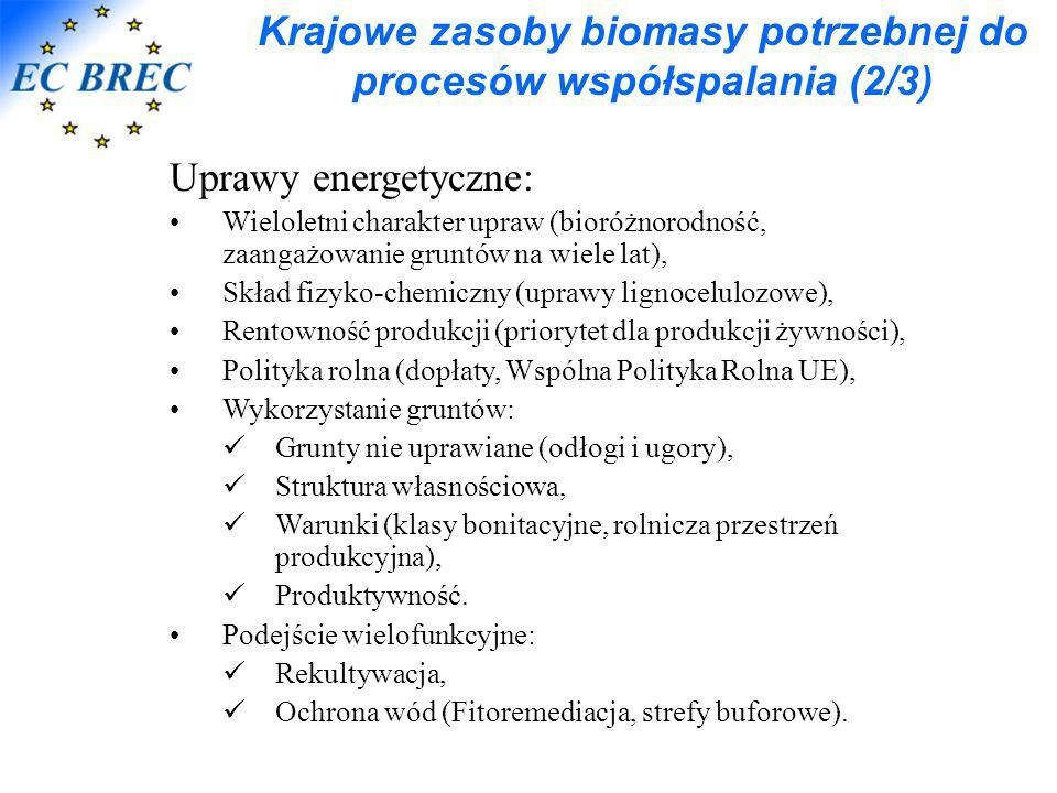 Krajowe zasoby biomasy potrzebnej do procesów współspalania (2/3)
