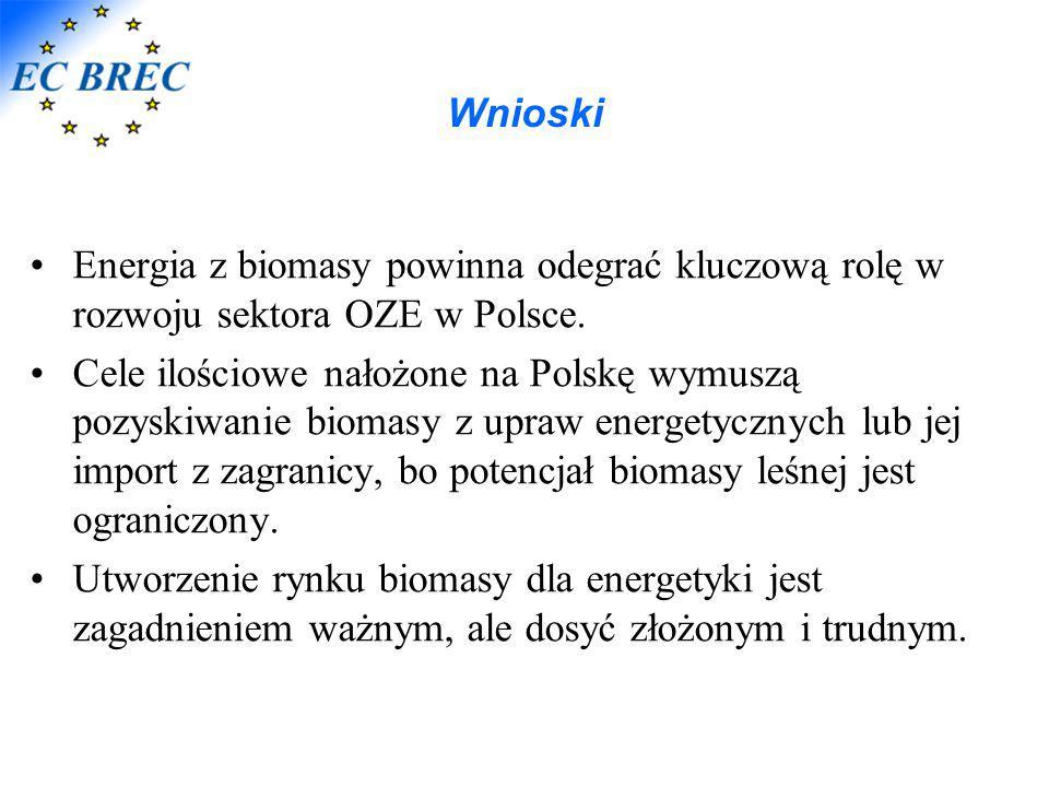 Wnioski Energia z biomasy powinna odegrać kluczową rolę w rozwoju sektora OZE w Polsce.
