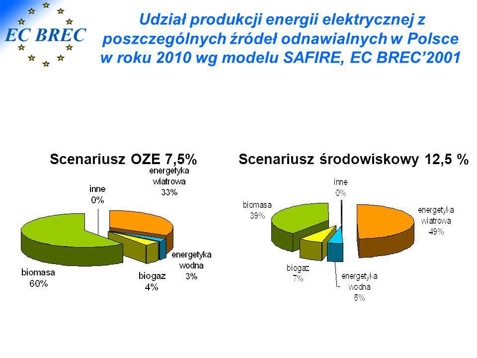 w roku 2010 wg modelu SAFIRE, EC BREC'2001