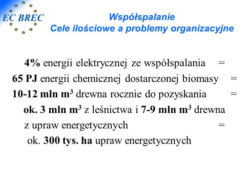 Współspalanie Cele ilościowe a problemy organizacyjne