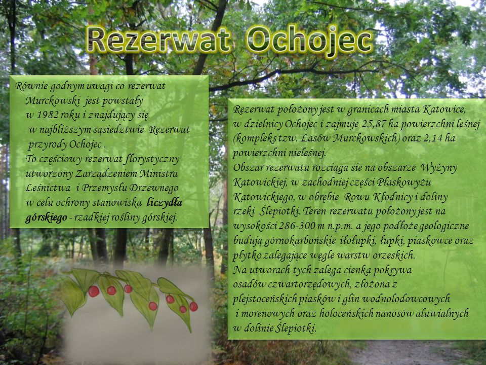 Rezerwat Ochojec Równie godnym uwagi co rezerwat