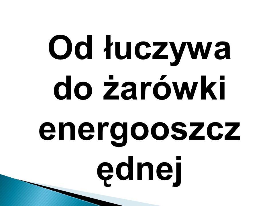 Od łuczywa do żarówki energooszczędnej