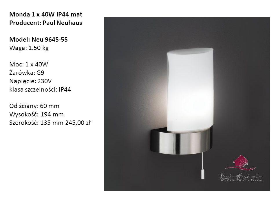 Monda 1 x 40W IP44 mat Producent: Paul Neuhaus.