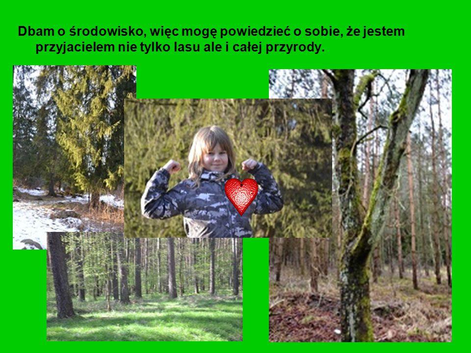 Dbam o środowisko, więc mogę powiedzieć o sobie, że jestem przyjacielem nie tylko lasu ale i całej przyrody.