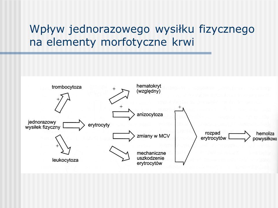 Wpływ jednorazowego wysiłku fizycznego na elementy morfotyczne krwi