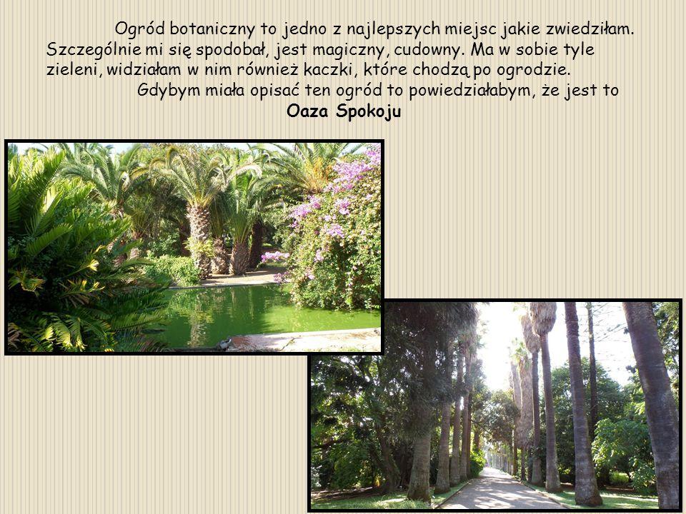 Ogród botaniczny to jedno z najlepszych miejsc jakie zwiedziłam