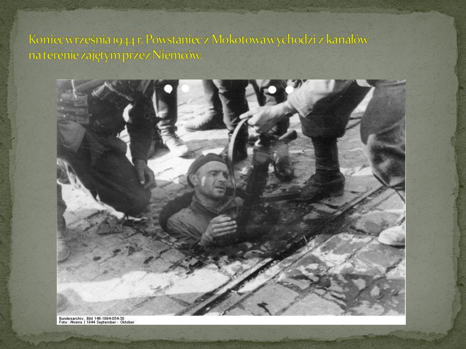 Koniec września 1944 r. Powstaniec z Mokotowa wychodzi z kanałów na terenie zajętym przez Niemców.