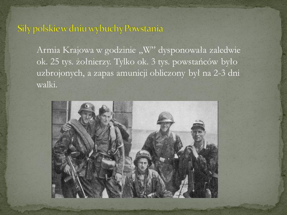 Siły polskie w dniu wybuchy Powstania