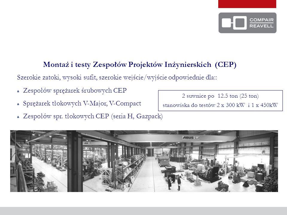 Montaż i testy Zespołów Projektów Inżynierskich (CEP)