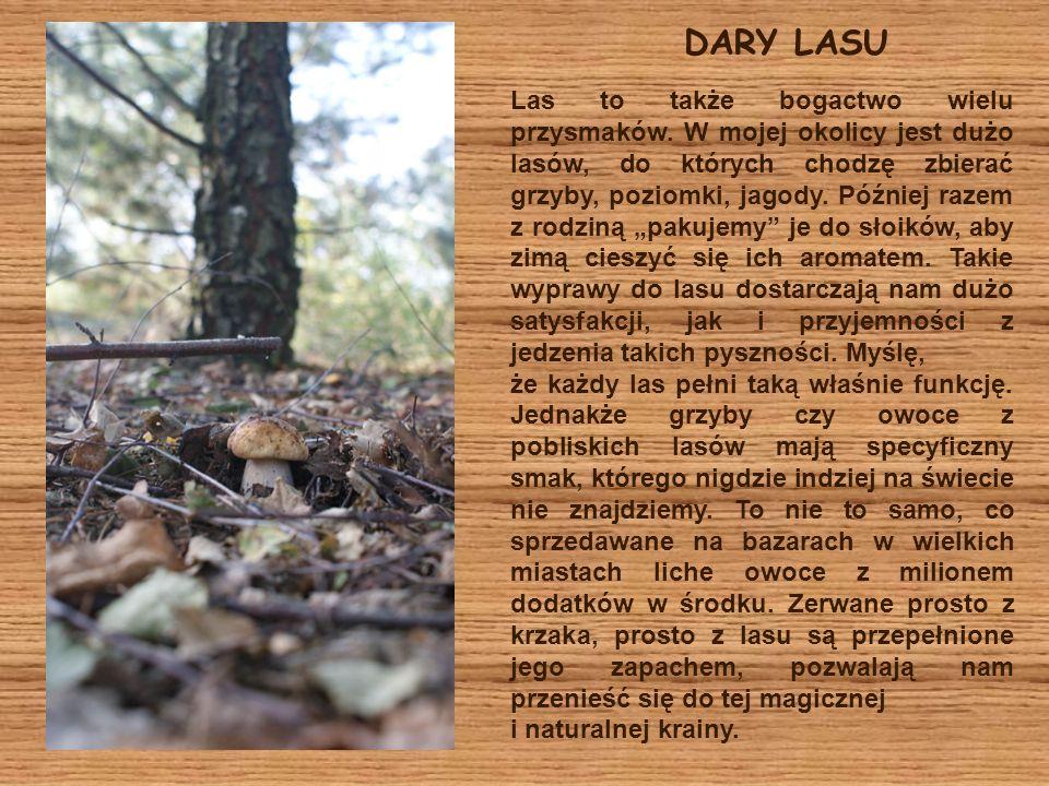 DARY LASU
