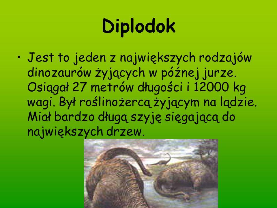 Diplodok