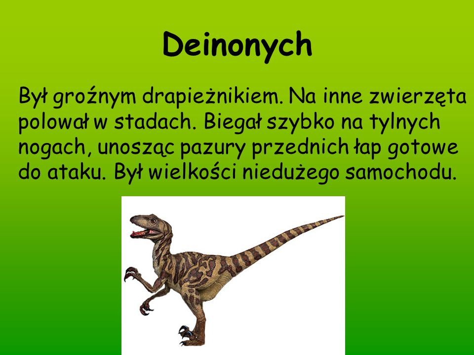 Deinonych