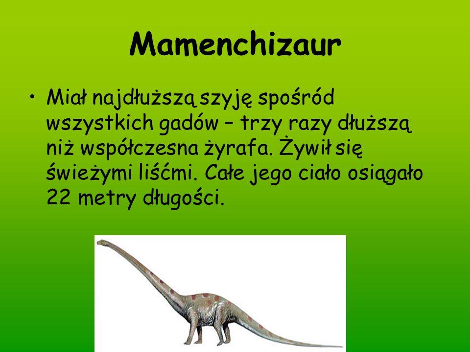 Mamenchizaur