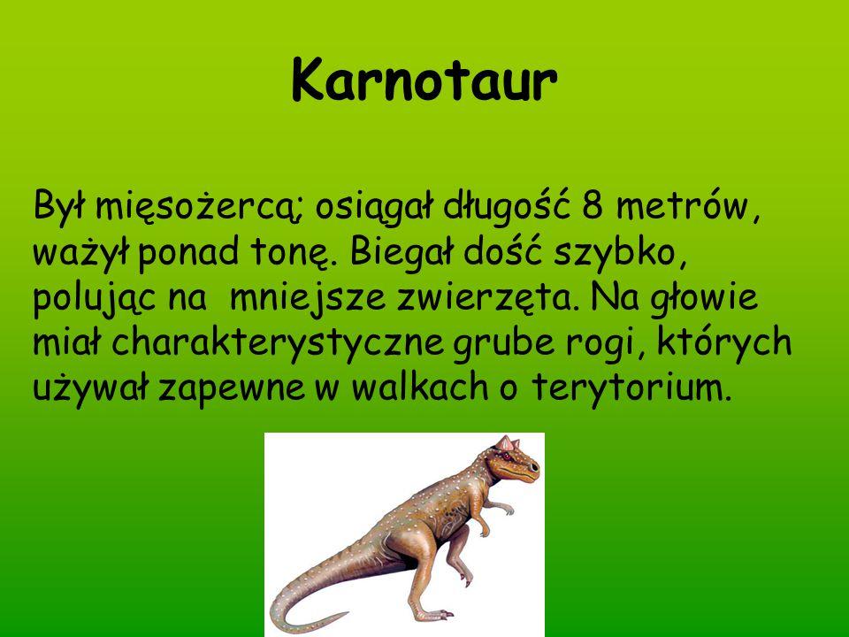 Karnotaur