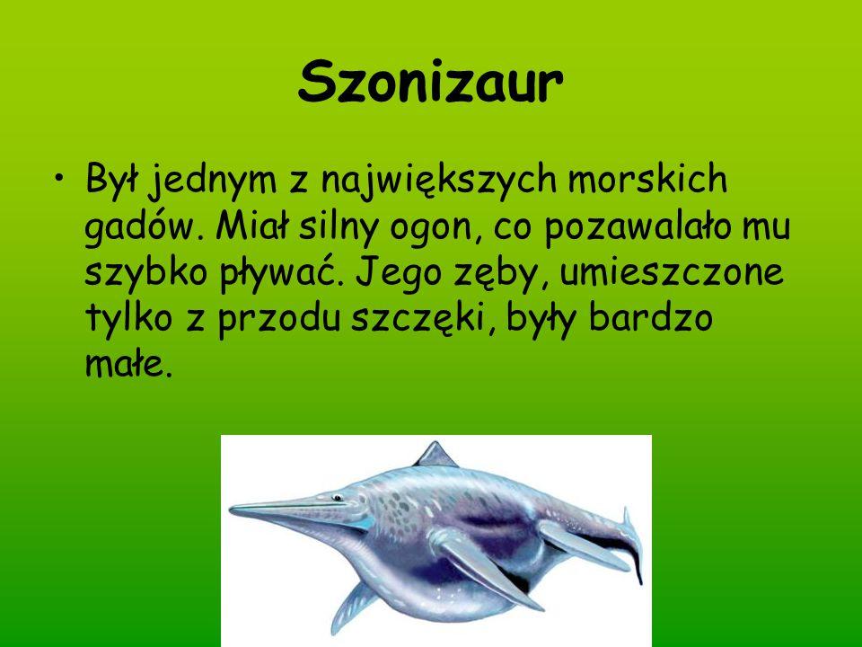 Szonizaur
