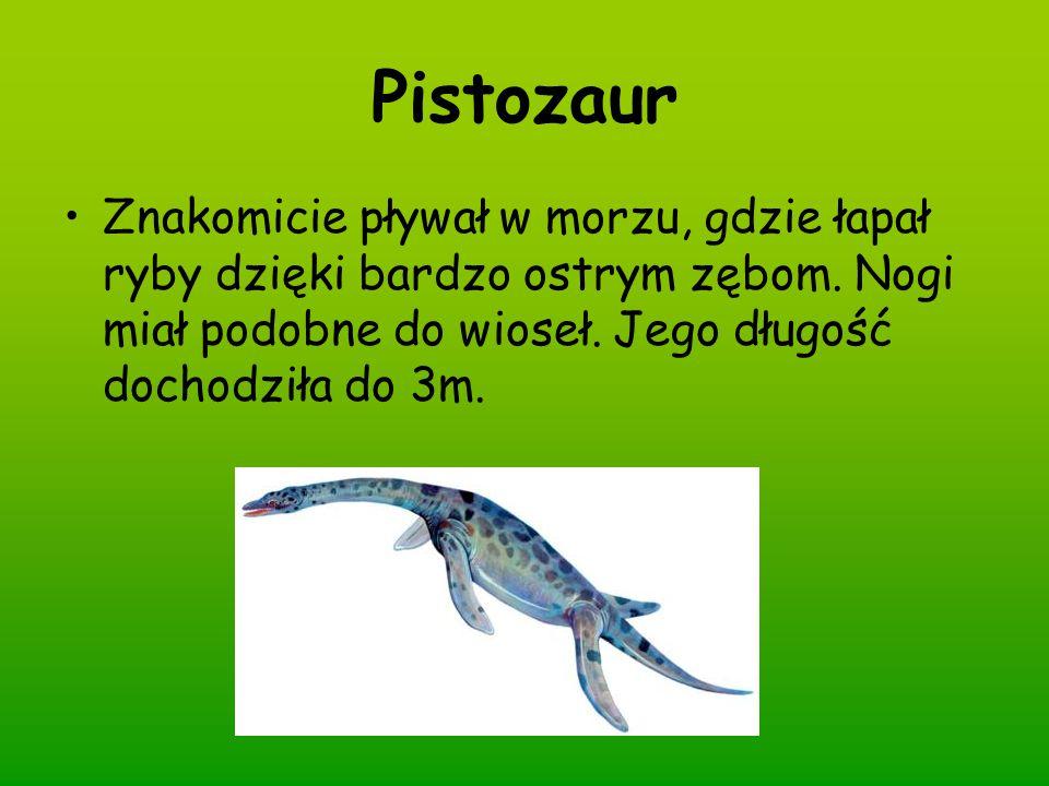 Pistozaur Znakomicie pływał w morzu, gdzie łapał ryby dzięki bardzo ostrym zębom.