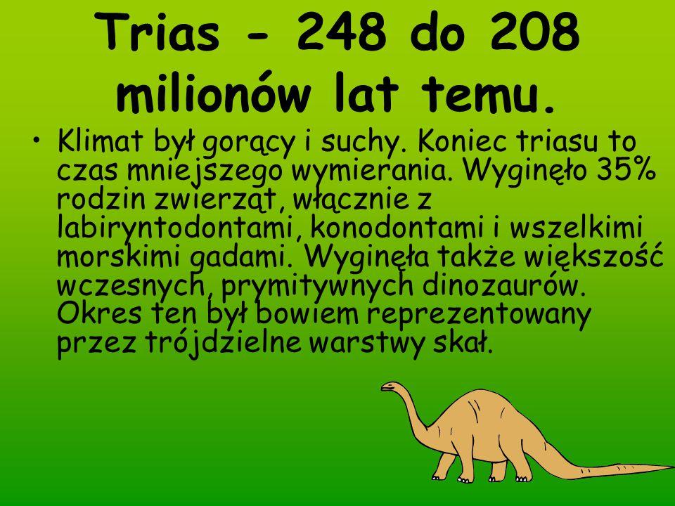 Trias - 248 do 208 milionów lat temu.