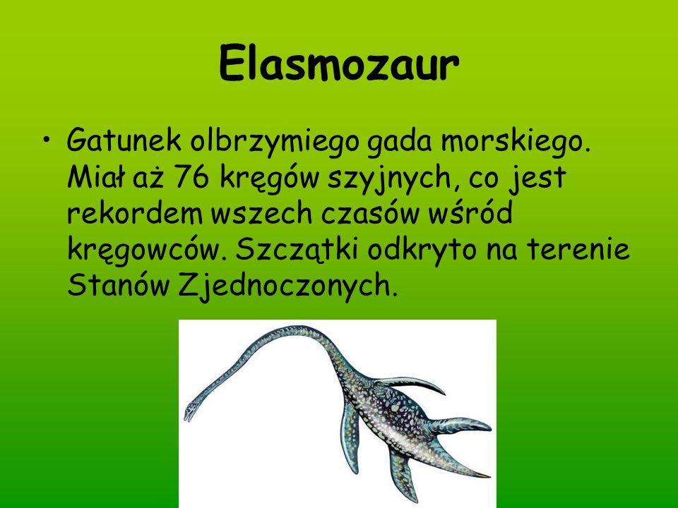 Elasmozaur