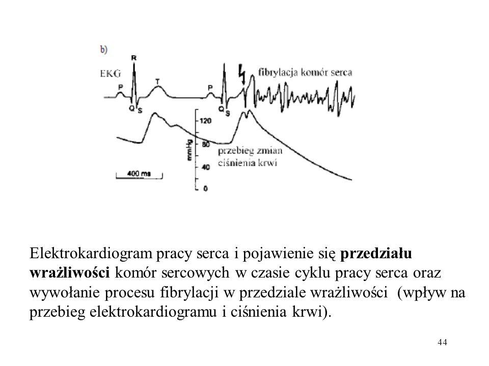 Elektrokardiogram pracy serca i pojawienie się przedziału wrażliwości komór sercowych w czasie cyklu pracy serca oraz wywołanie procesu fibrylacji w przedziale wrażliwości (wpływ na przebieg elektrokardiogramu i ciśnienia krwi).