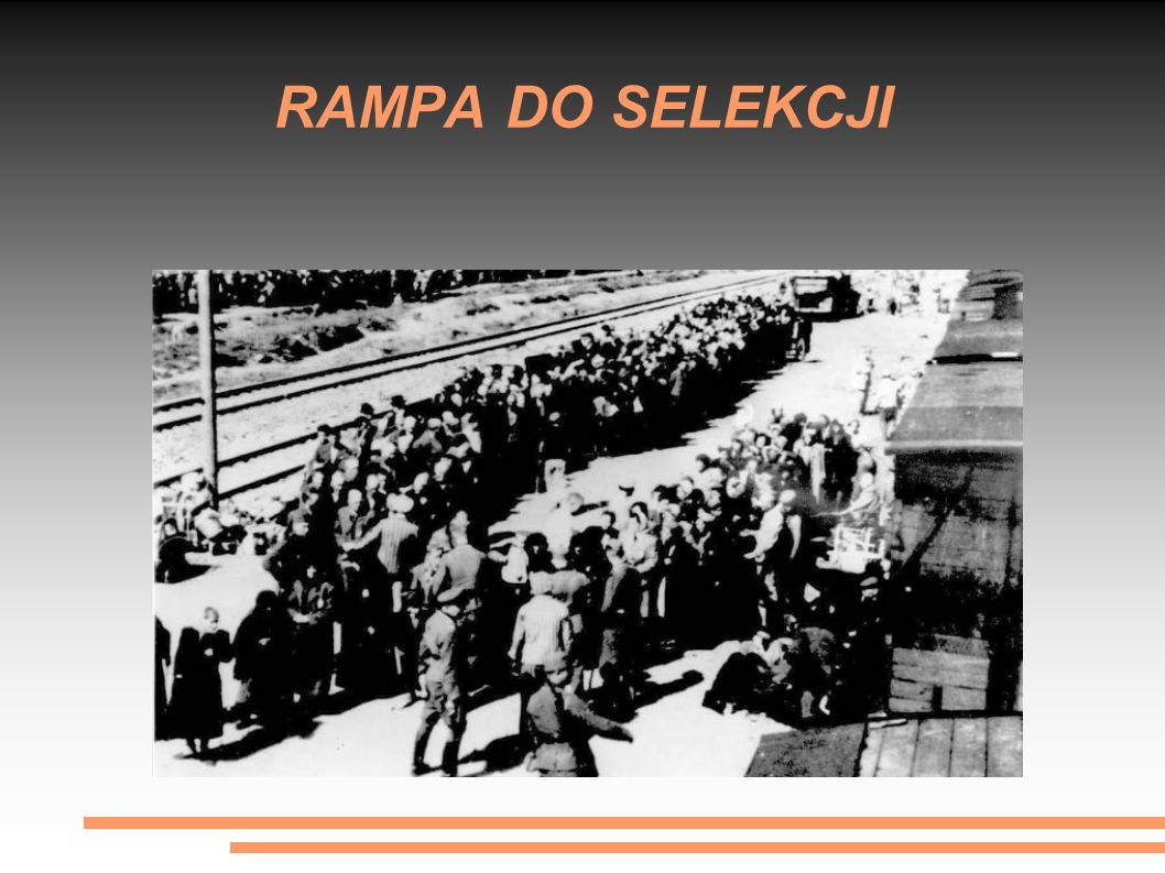 RAMPA DO SELEKCJI